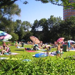 Zwembad De Vliet ligweide